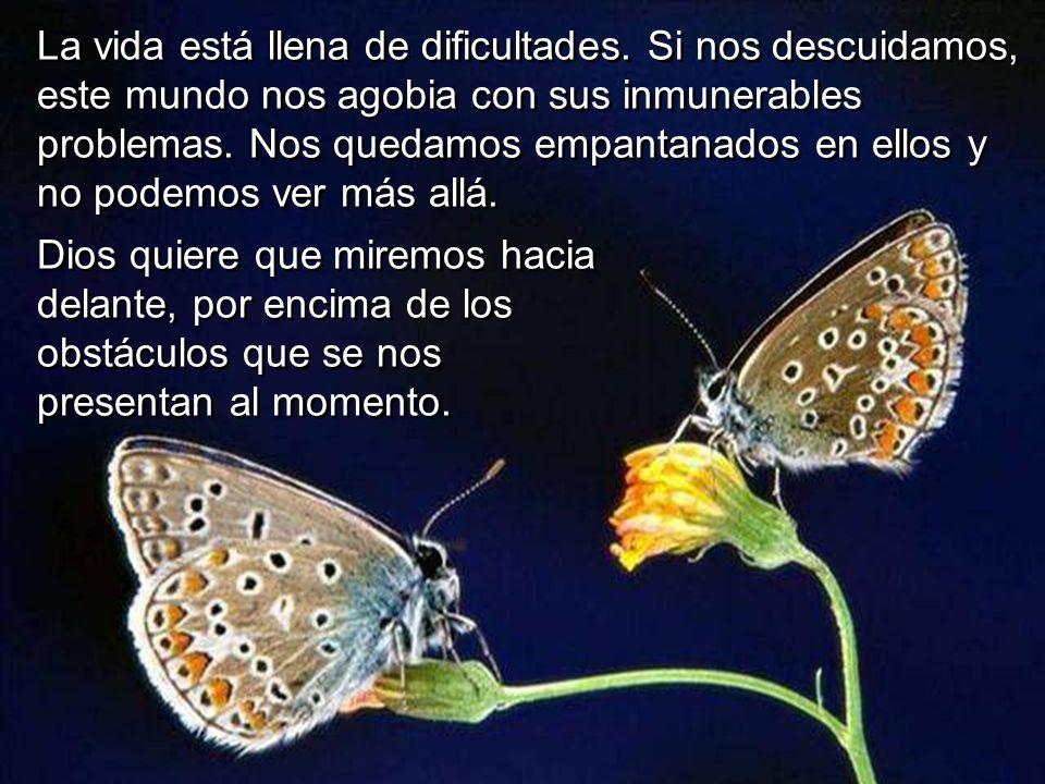 La vida está llena de dificultades