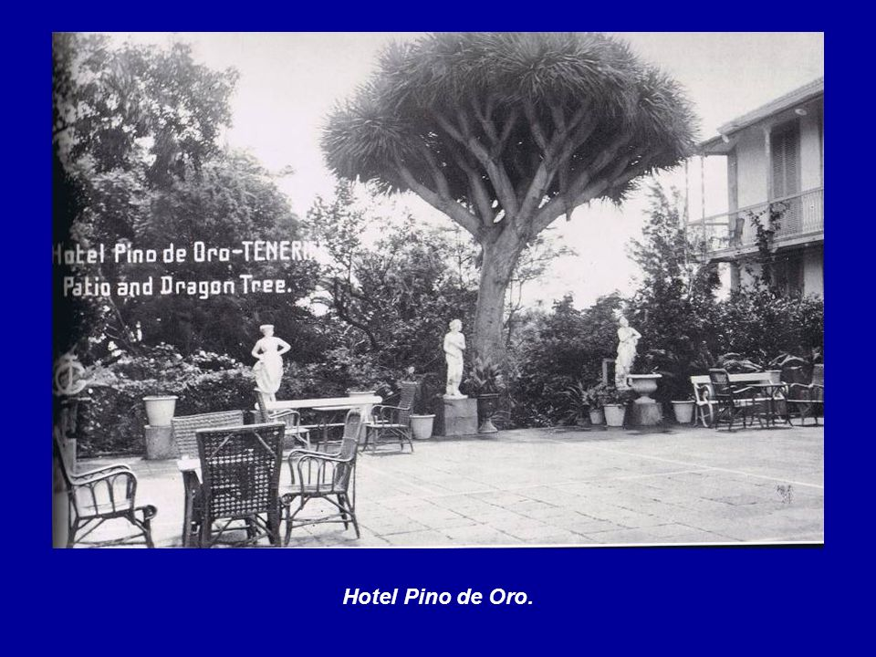 Hotel Pino de Oro.