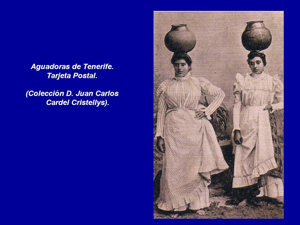 (Colección D. Juan Carlos Cardel Cristellys).