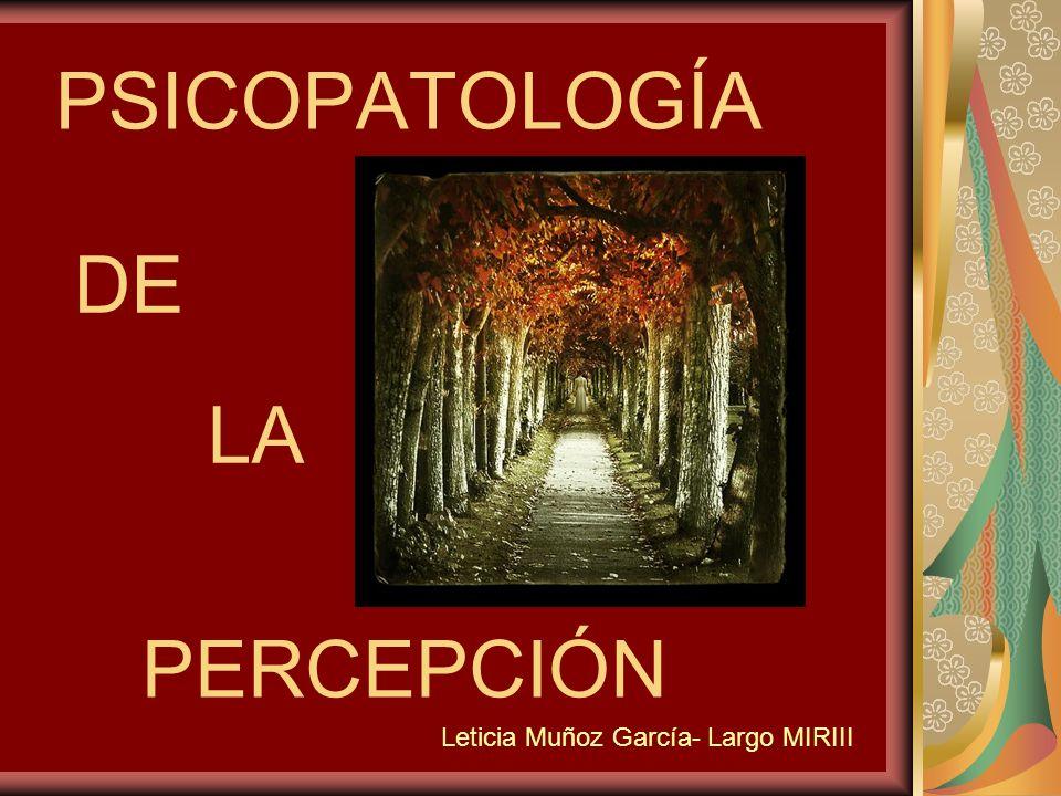 PSICOPATOLOGÍA DE LA PERCEPCIÓN Leticia Muñoz García- Largo MIRIII