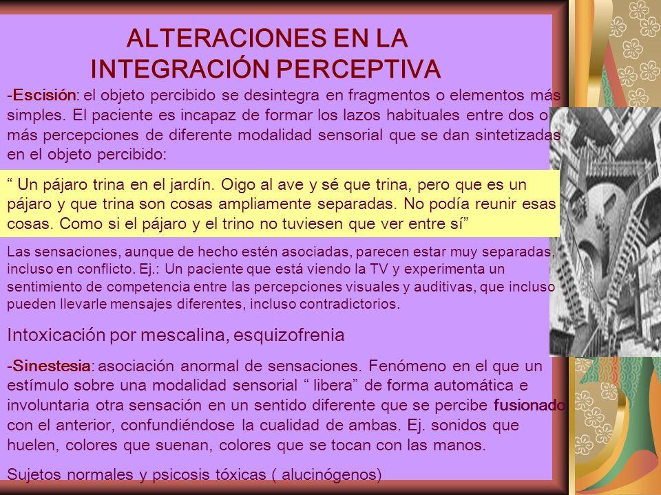 ALTERACIONES EN LA INTEGRACIÓN PERCEPTIVA