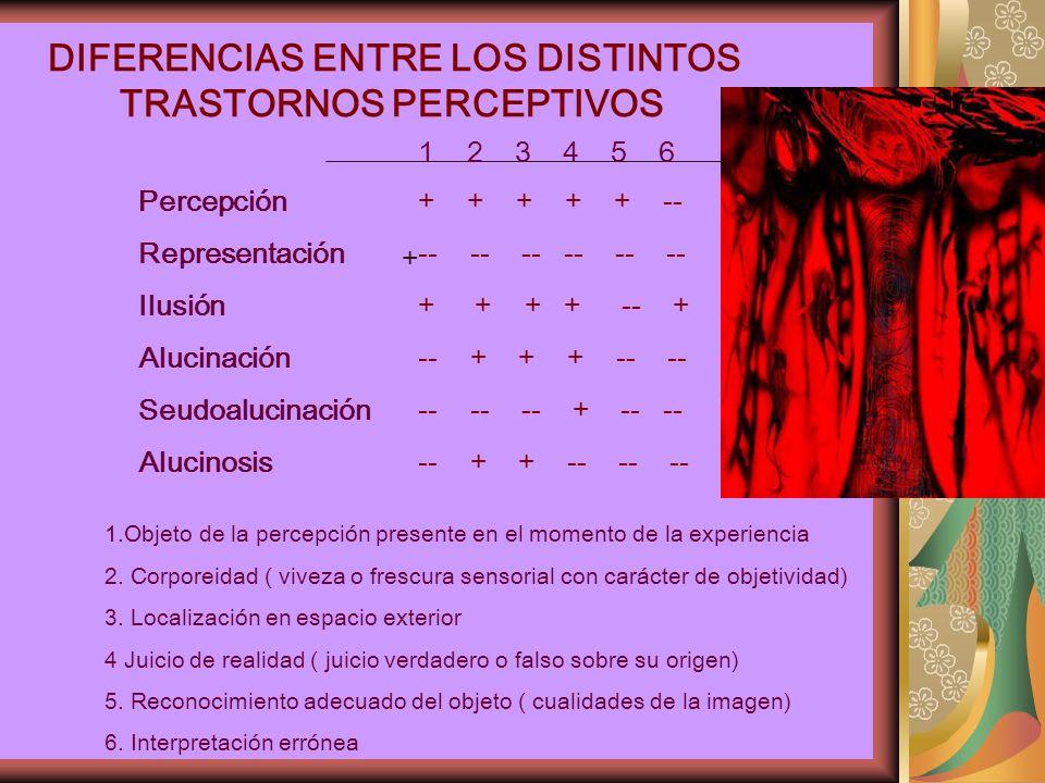 DIFERENCIAS ENTRE LOS DISTINTOS TRASTORNOS PERCEPTIVOS