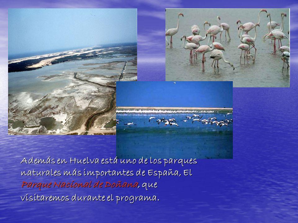 Además en Huelva está uno de los parques naturales más importantes de España, El Parque Nacional de Doñana, que visitaremos durante el programa.