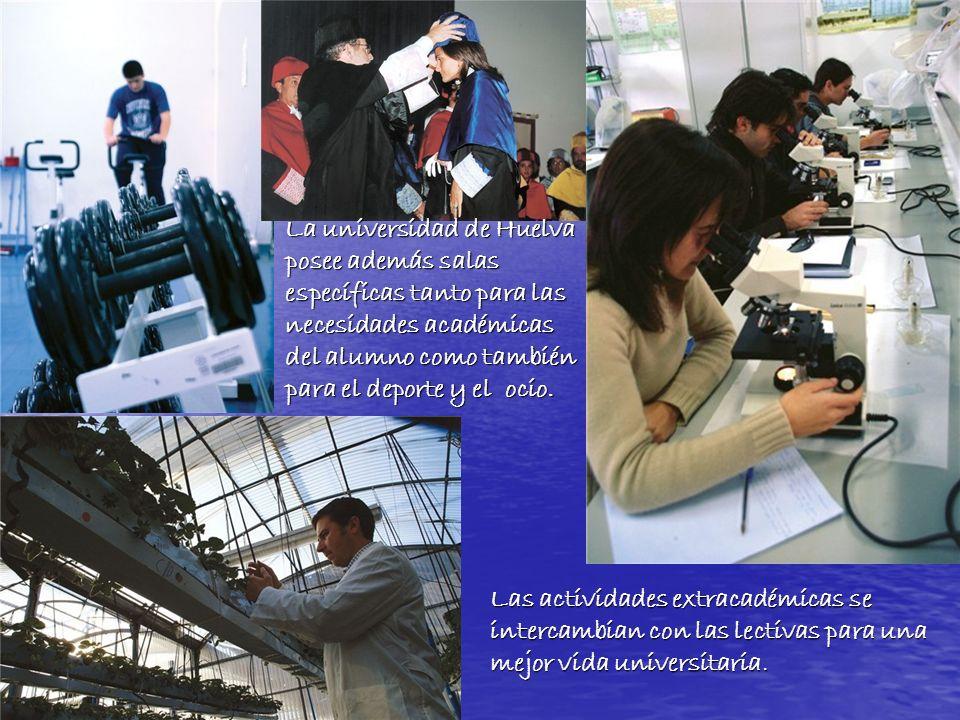 La universidad de Huelva posee además salas específicas tanto para las necesidades académicas del alumno como también para el deporte y el ocio.