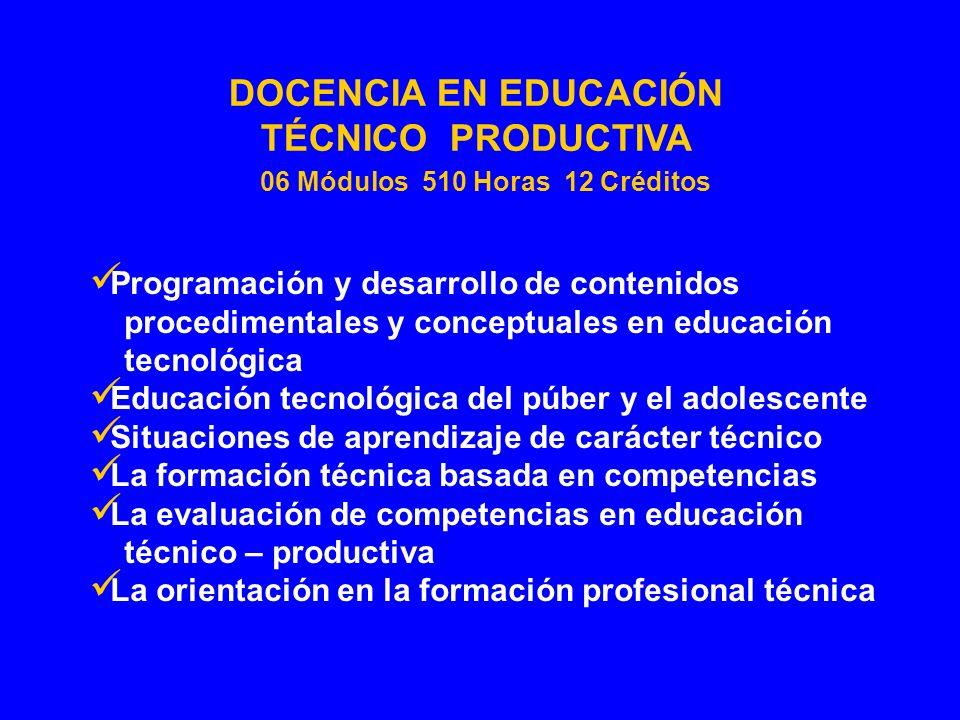 DOCENCIA EN EDUCACIÓN TÉCNICO PRODUCTIVA