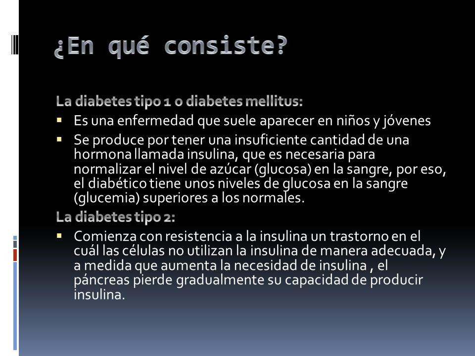 ¿En qué consiste La diabetes tipo 1 o diabetes mellitus: