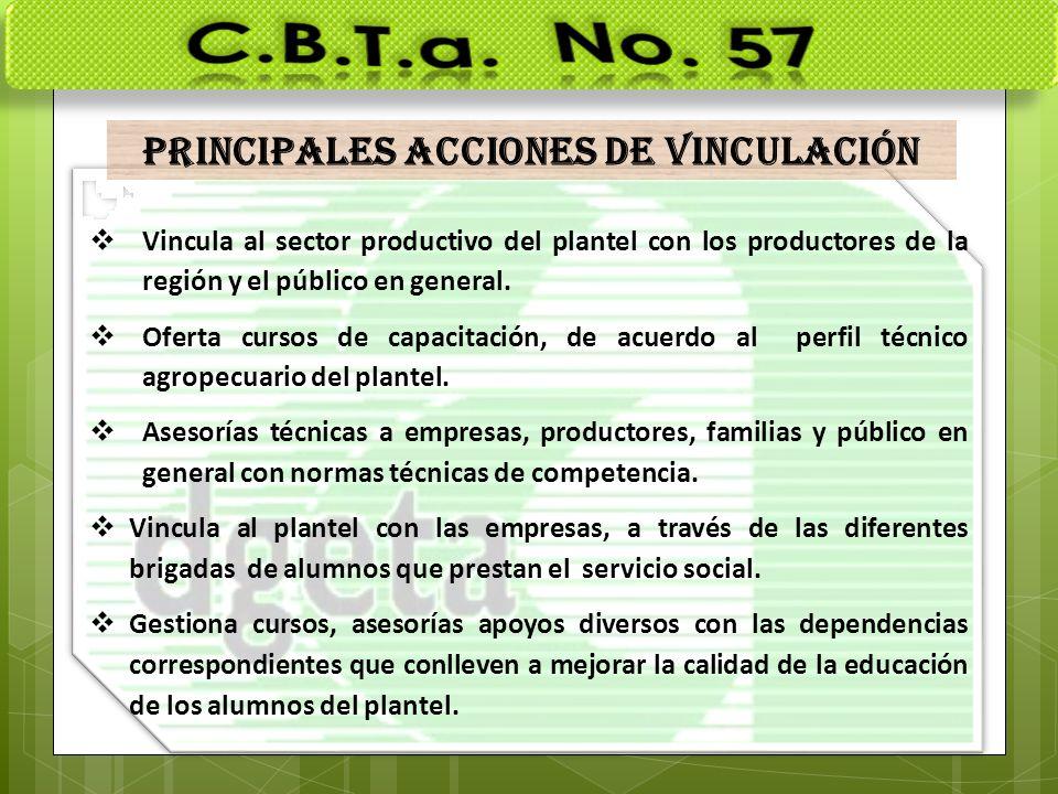 PRINCIPALES ACCIONES DE VINCULACIÓN