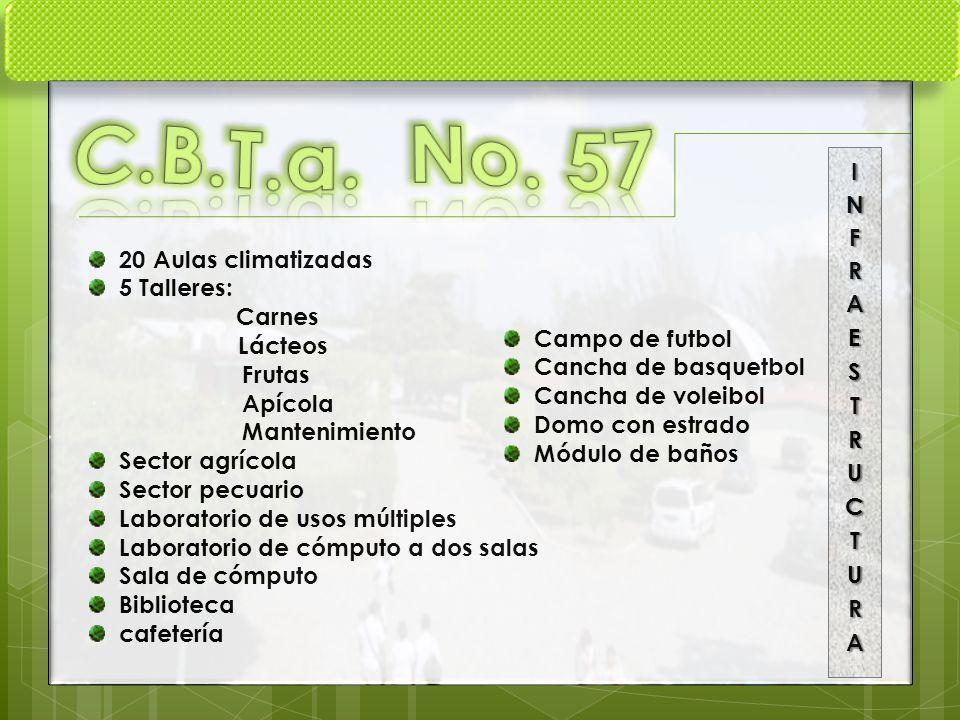 C.B.T.a. No. 57 INFRAESTRUCTURA 20 Aulas climatizadas 5 Talleres: