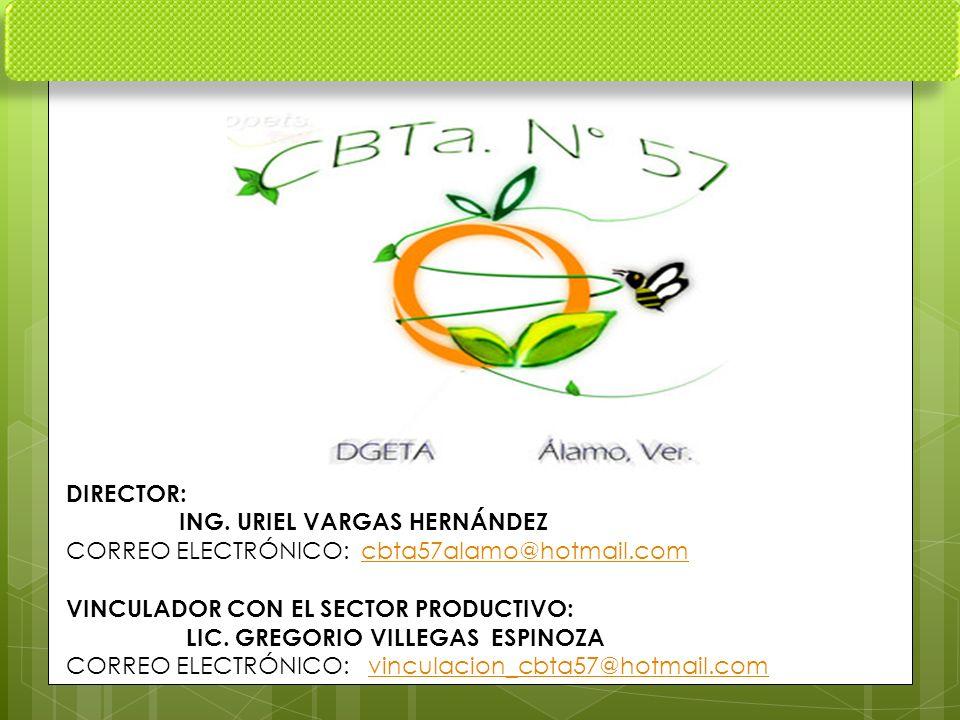 DIRECTOR: ING. URIEL VARGAS HERNÁNDEZ. CORREO ELECTRÓNICO: cbta57alamo@hotmail.com. VINCULADOR CON EL SECTOR PRODUCTIVO: