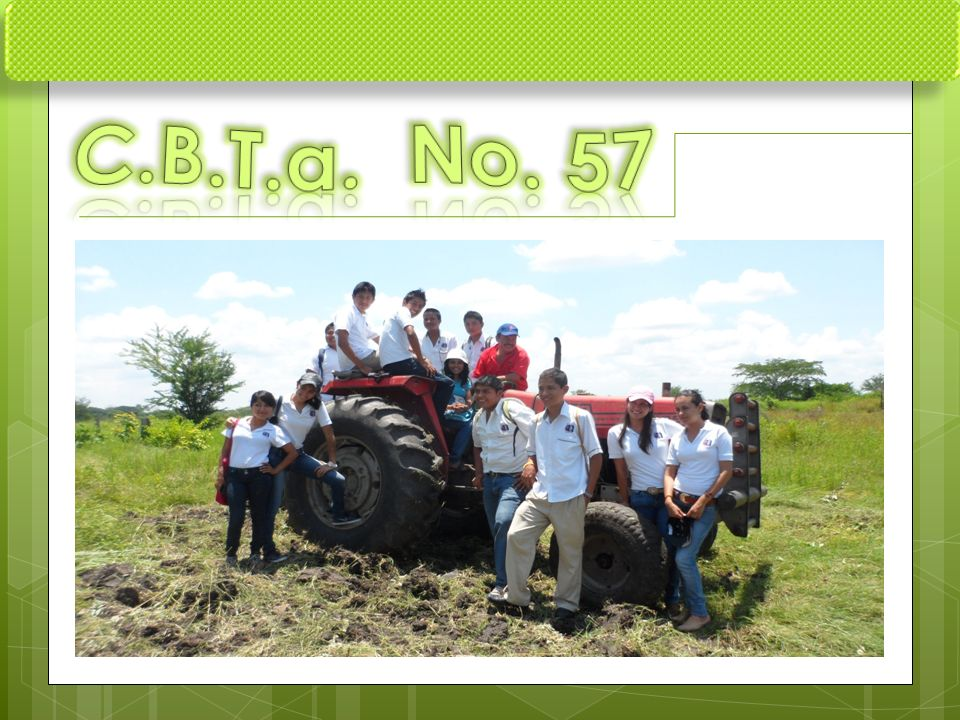 C.B.T.a. No. 57