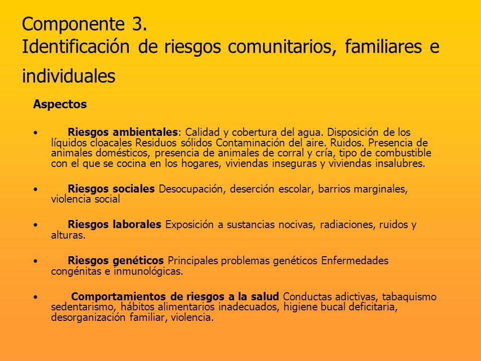 Componente 3. Identificación de riesgos comunitarios, familiares e individuales