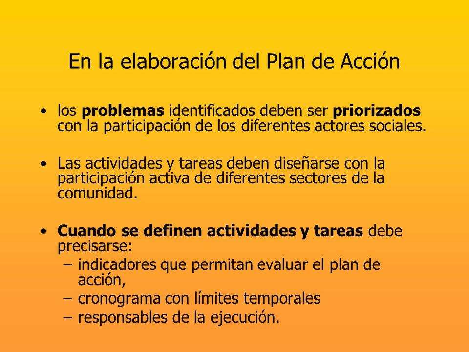 En la elaboración del Plan de Acción