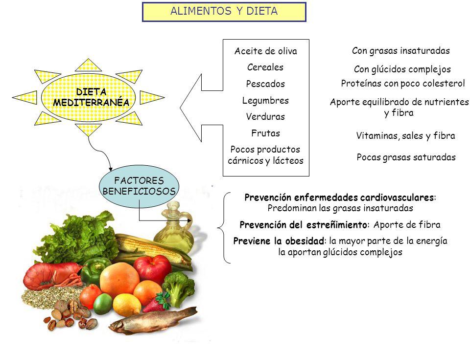 ALIMENTOS Y DIETA Aceite de oliva Con grasas insaturadas Cereales