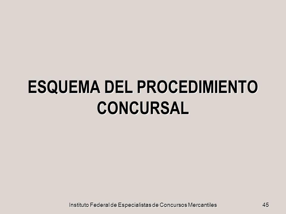 ESQUEMA DEL PROCEDIMIENTO CONCURSAL