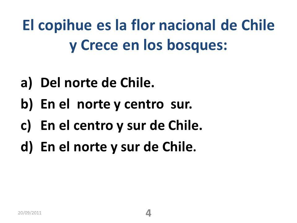 El copihue es la flor nacional de Chile y Crece en los bosques: