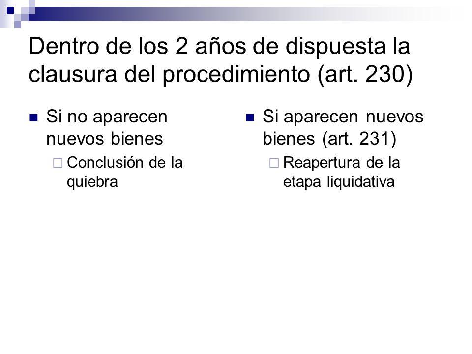 Dentro de los 2 años de dispuesta la clausura del procedimiento (art
