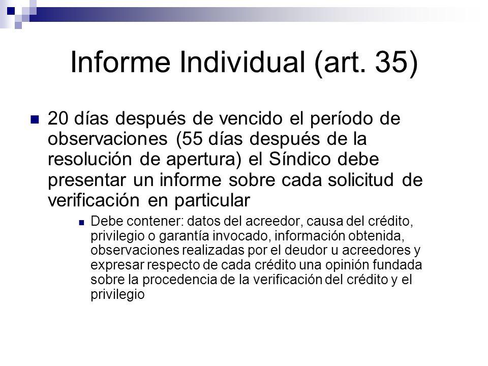 Informe Individual (art. 35)