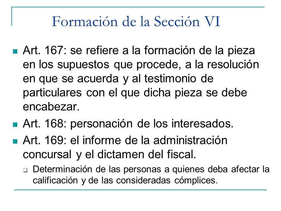 Formación de la Sección VI