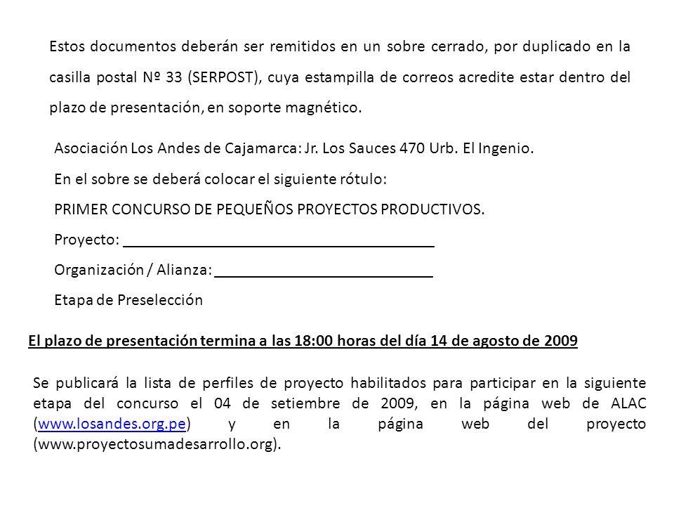 Estos documentos deberán ser remitidos en un sobre cerrado, por duplicado en la casilla postal Nº 33 (SERPOST), cuya estampilla de correos acredite estar dentro del plazo de presentación, en soporte magnético.