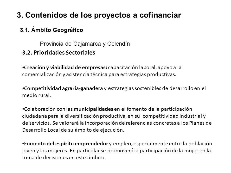 3. Contenidos de los proyectos a cofinanciar