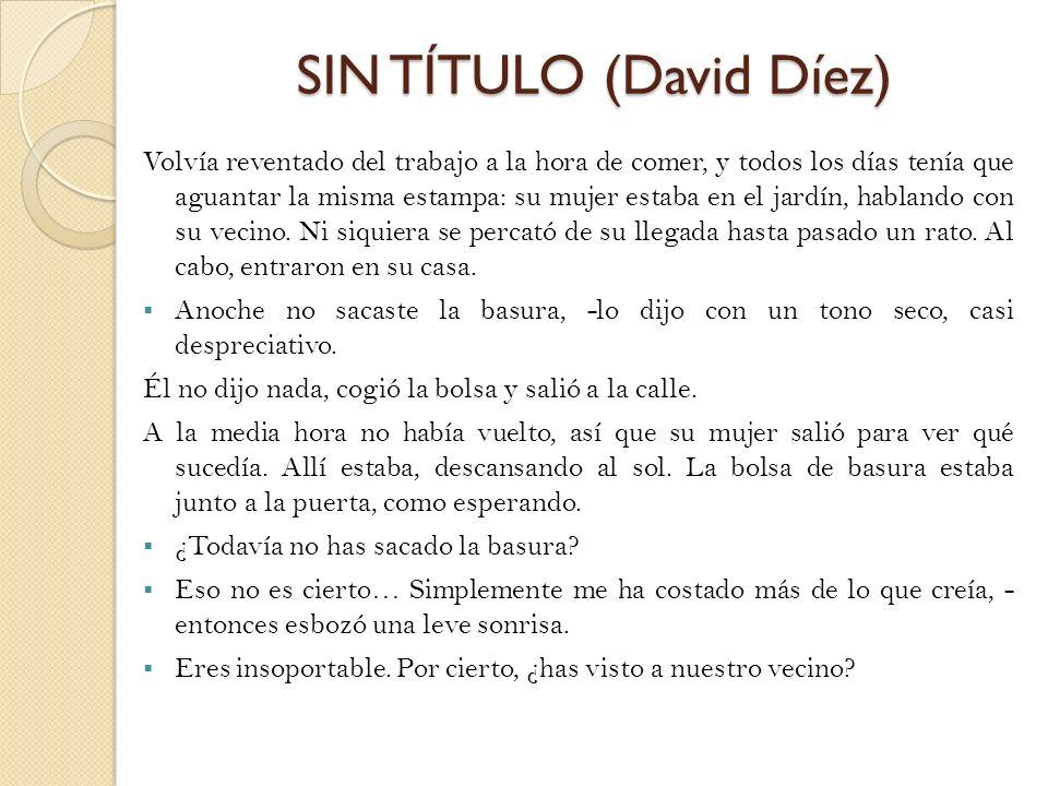 SIN TÍTULO (David Díez)
