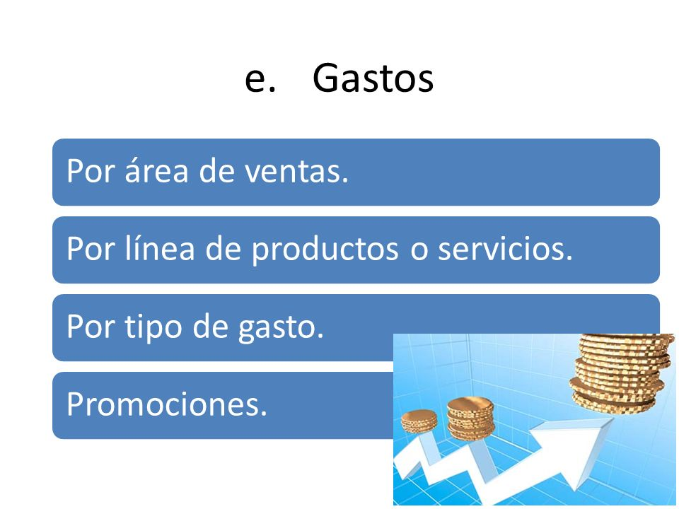 e. Gastos Por área de ventas. Por línea de productos o servicios.