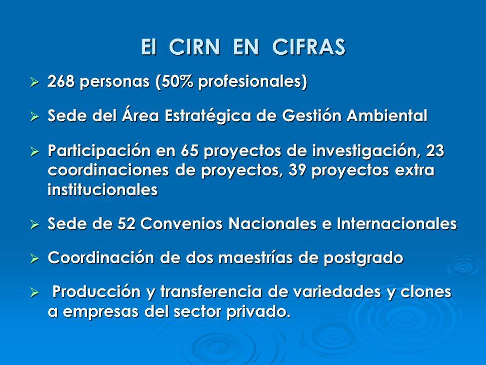 El CIRN EN CIFRAS 268 personas (50% profesionales)