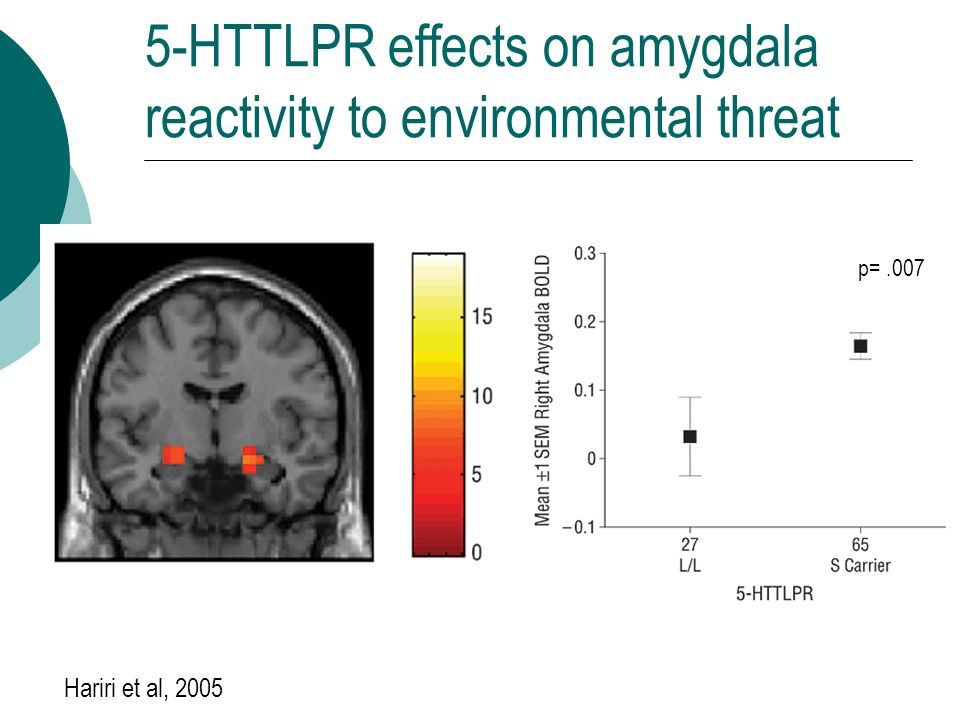 5-HTTLPR effects on amygdala reactivity to environmental threat