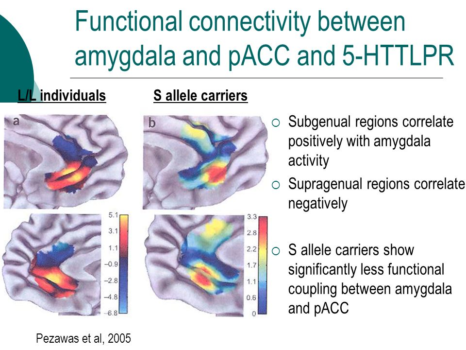 Functional connectivity between amygdala and pACC and 5-HTTLPR