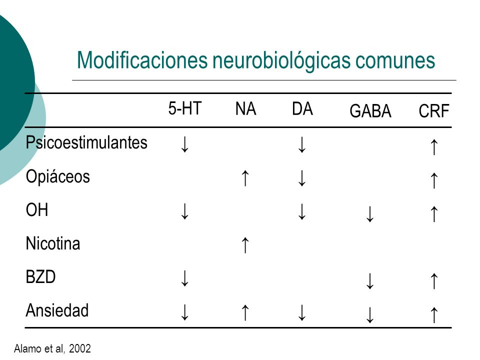 Modificaciones neurobiológicas comunes