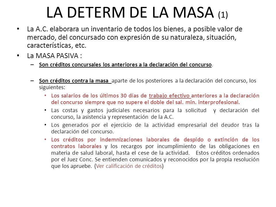 LA DETERM DE LA MASA (1)