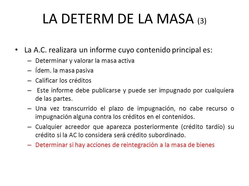 LA DETERM DE LA MASA (3) La A.C. realizara un informe cuyo contenido principal es: Determinar y valorar la masa activa.