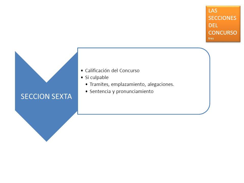 SECCION SEXTA LAS SECCIONES DEL CONCURSO tres