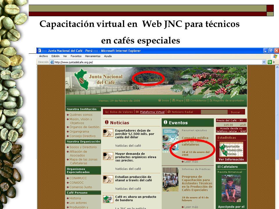 Capacitación virtual en Web JNC para técnicos