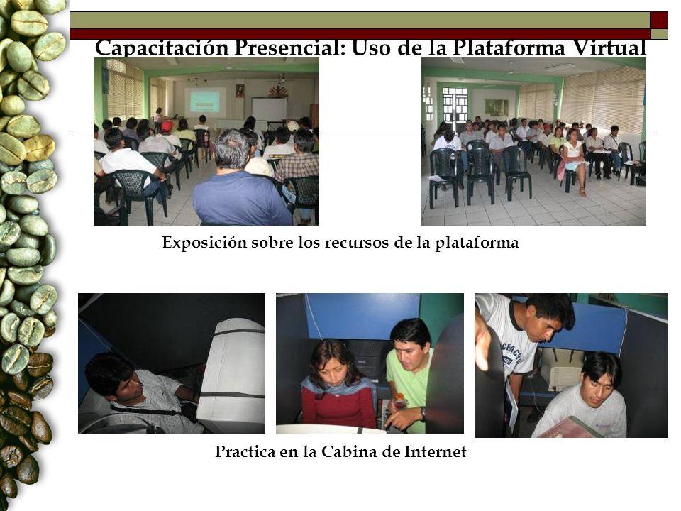 Capacitación Presencial: Uso de la Plataforma Virtual