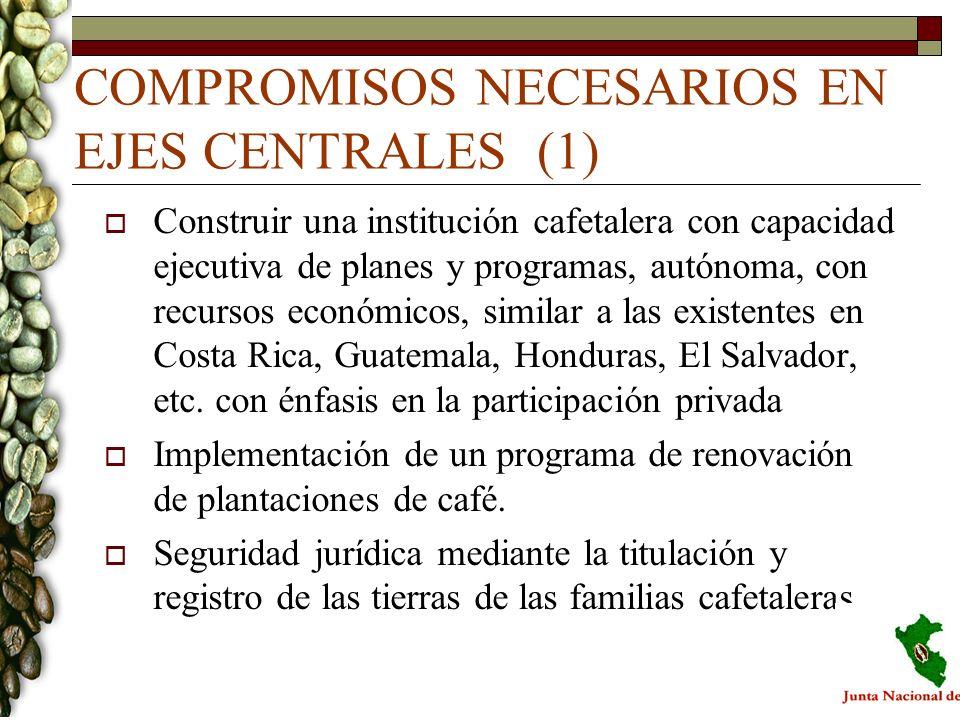 COMPROMISOS NECESARIOS EN EJES CENTRALES (1)