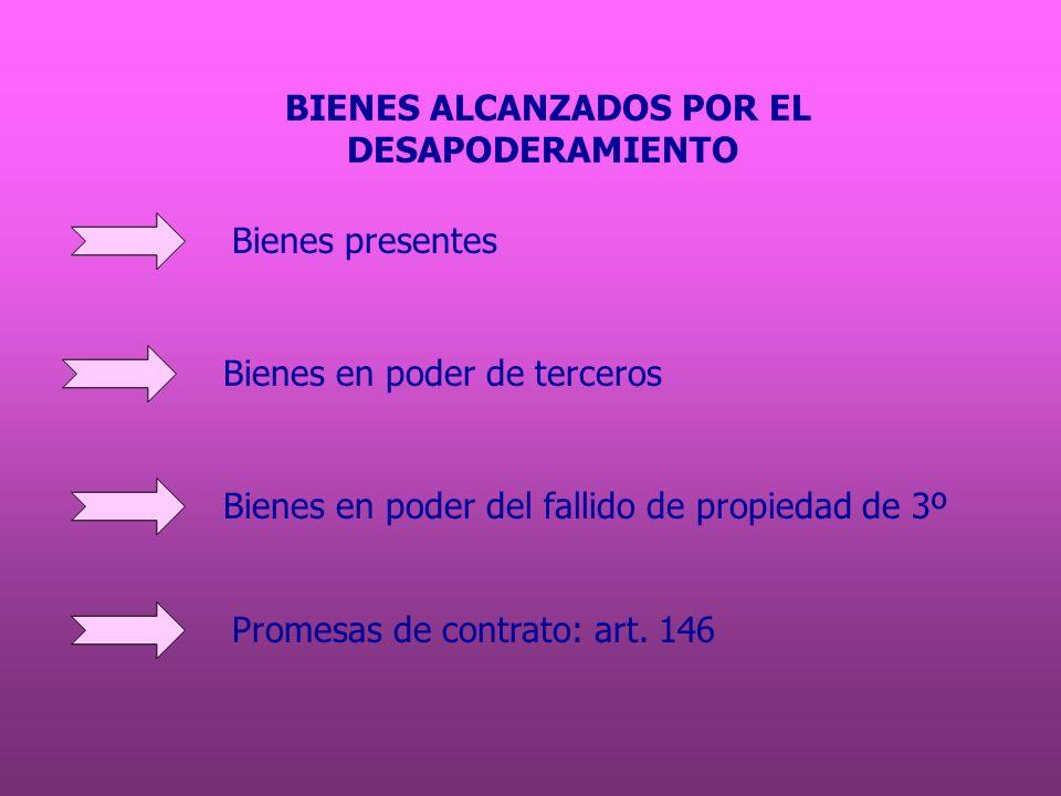 BIENES ALCANZADOS POR EL
