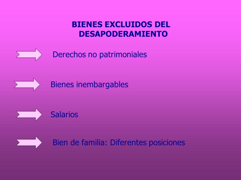 BIENES EXCLUIDOS DELDESAPODERAMIENTO.Derechos no patrimoniales.