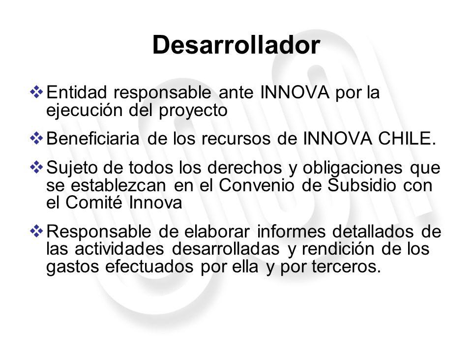 Desarrollador Entidad responsable ante INNOVA por la ejecución del proyecto. Beneficiaria de los recursos de INNOVA CHILE.