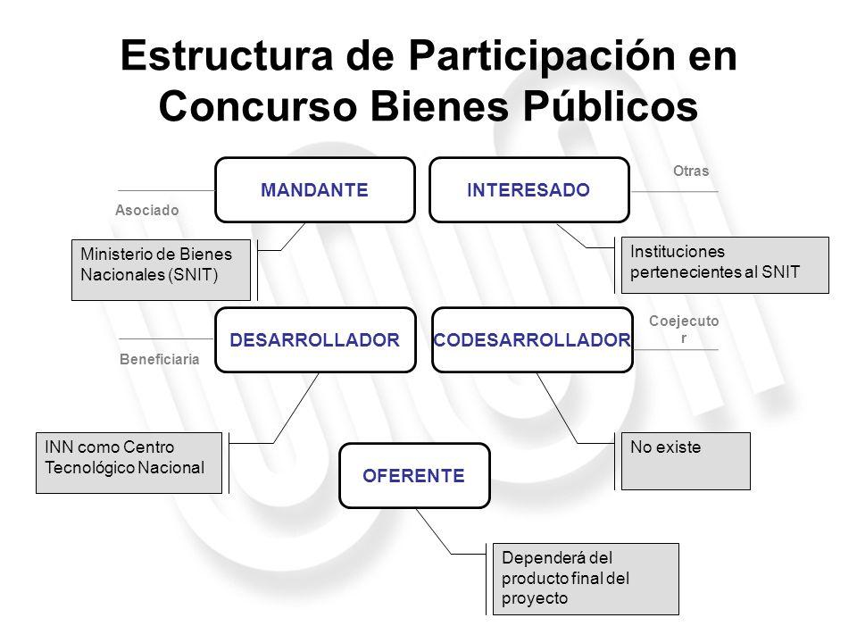 Estructura de Participación en Concurso Bienes Públicos