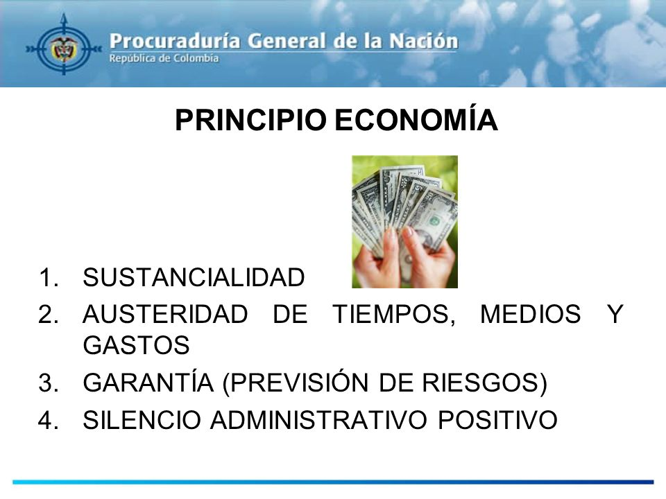 PRINCIPIO ECONOMÍA SUSTANCIALIDAD