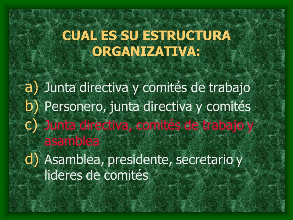 CUAL ES SU ESTRUCTURA ORGANIZATIVA: