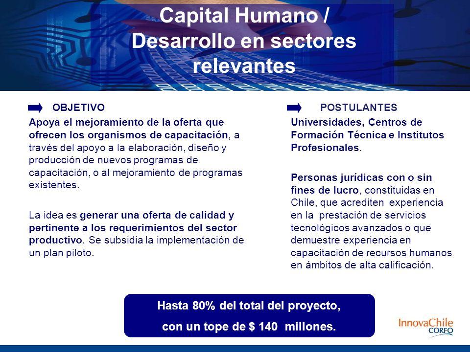 Capital Humano / Desarrollo en sectores relevantes