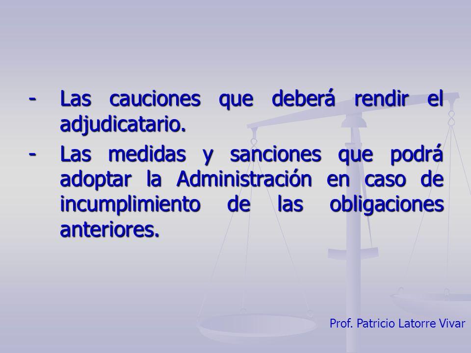 - Las cauciones que deberá rendir el adjudicatario.