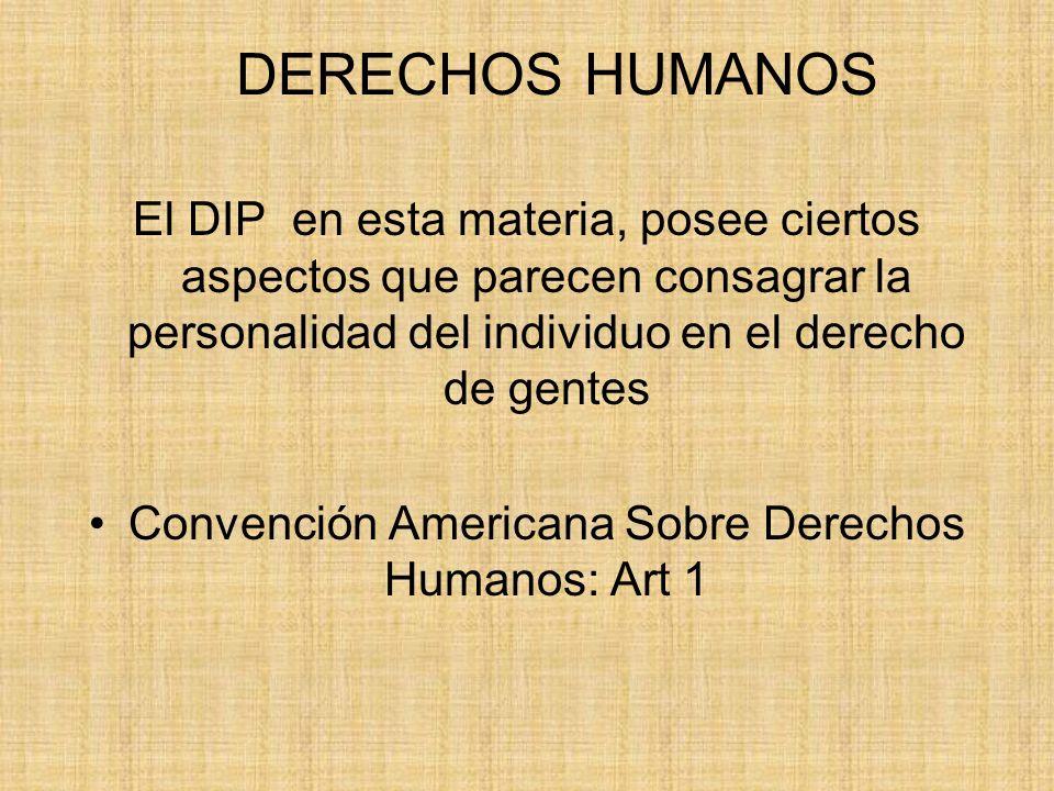 Convención Americana Sobre Derechos Humanos: Art 1