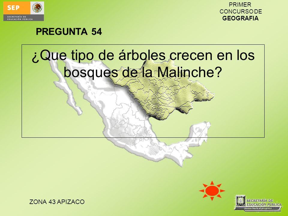 ¿Que tipo de árboles crecen en los bosques de la Malinche