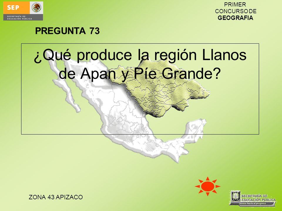 ¿Qué produce la región Llanos de Apan y Píe Grande