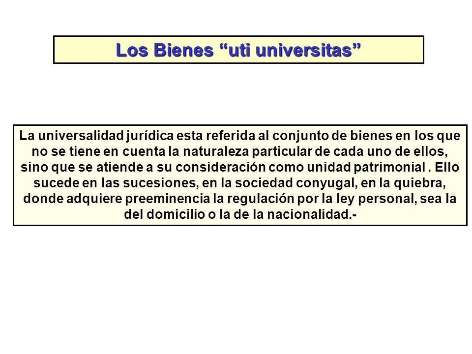 Los Bienes uti universitas