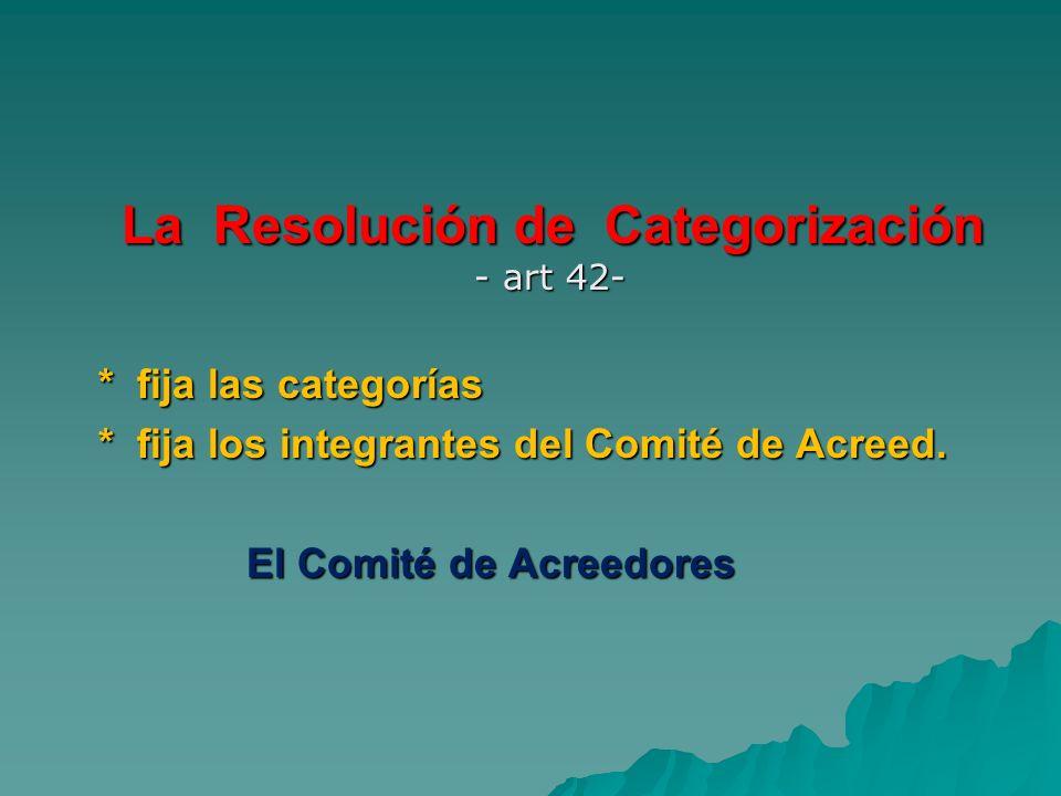 La Resolución de Categorización - art 42-