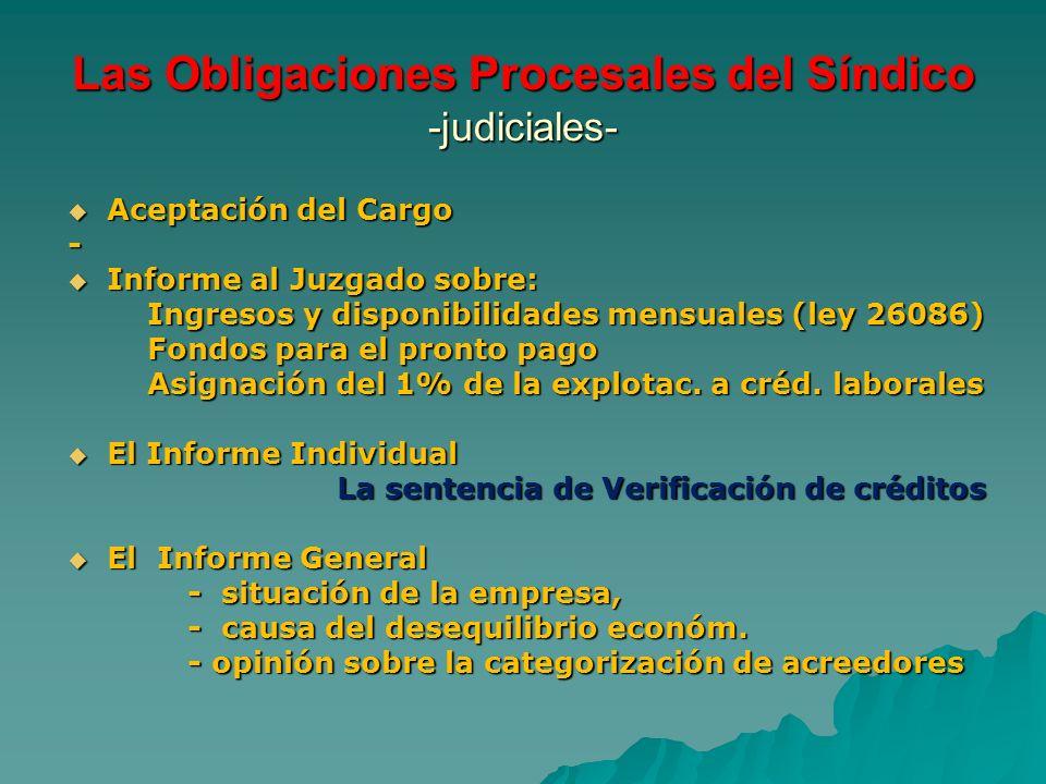Las Obligaciones Procesales del Síndico -judiciales-